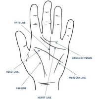 Palmistry Course in Tiruvallur